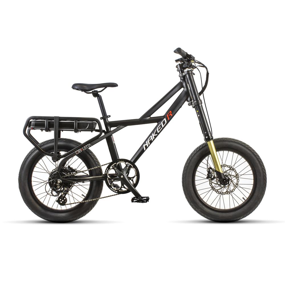 greenbike pesaro-bici elettriche-Ekletta-Naked R